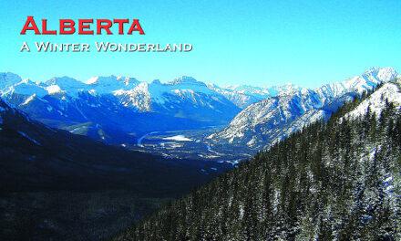 Alberta A Winter Wonderland