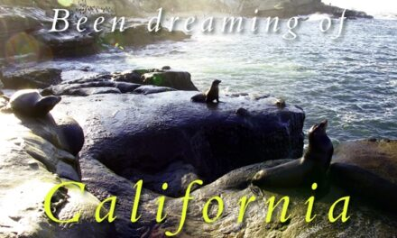 Been dreaming of California