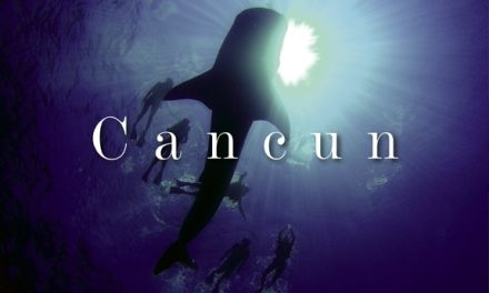 Mexico – Cancun: The Wonder of Whale Sharks