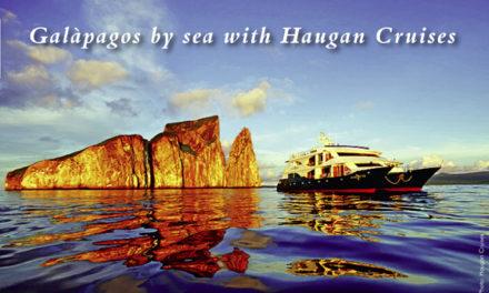 Galàpagos by sea with Haugan Cruises