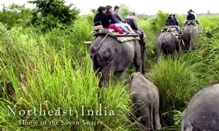 Northeast India – Home of the Seven Sisters