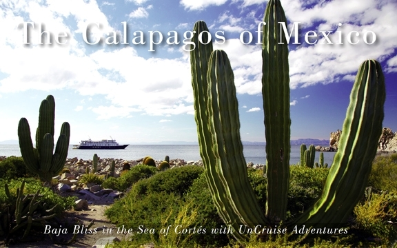 The Galapagos of Mexico