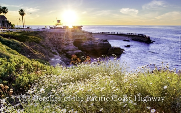 The Beaches of the Pacific Coast Highway