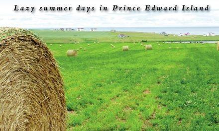 Lazy summer days in Prince Edward Island
