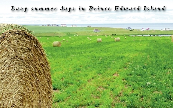 Lazy summer days in Prince Edward Island