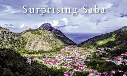 Surprising Saba