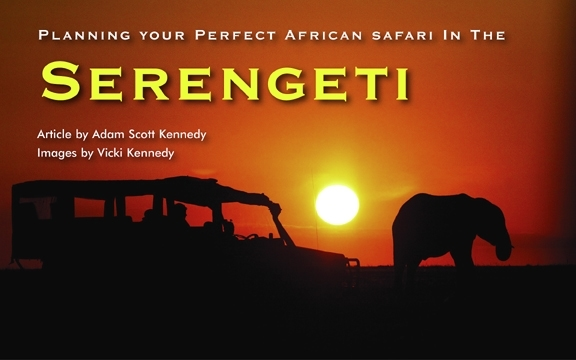 Tanzania – Planning your Perfect African Safari In the Serengeti