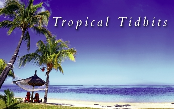 Tropical Tidbits Spring 2019