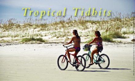 Off-Radar & Fabulous Florida Fun
