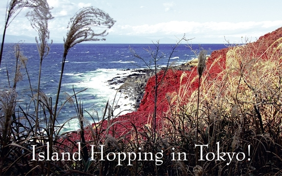 Japan – Island Hopping in Tokyo!