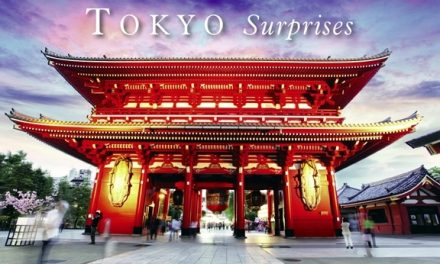 Japan – Tokyo Surprises