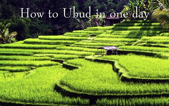 Indonesia – How to Ubud in one day