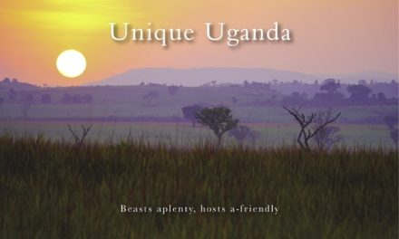 Unique Uganda: Beasts aplenty, hosts a-friendly