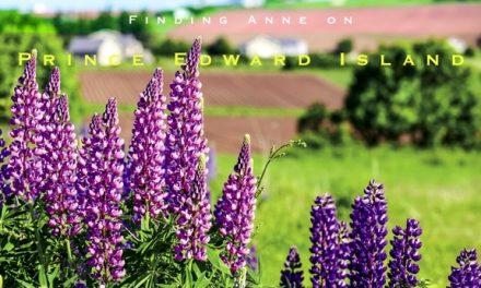 Finding Anne on Prince Edward Island