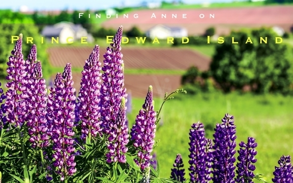 Finding Anne on Prince Edward Island