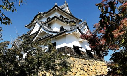 Hikone Castle, Japan: Beyond Imagination