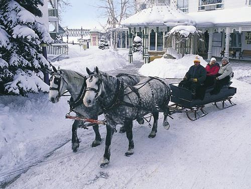 Winter Fun at Fern Resort