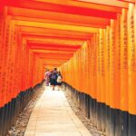 Kyoto in all its Splendour
