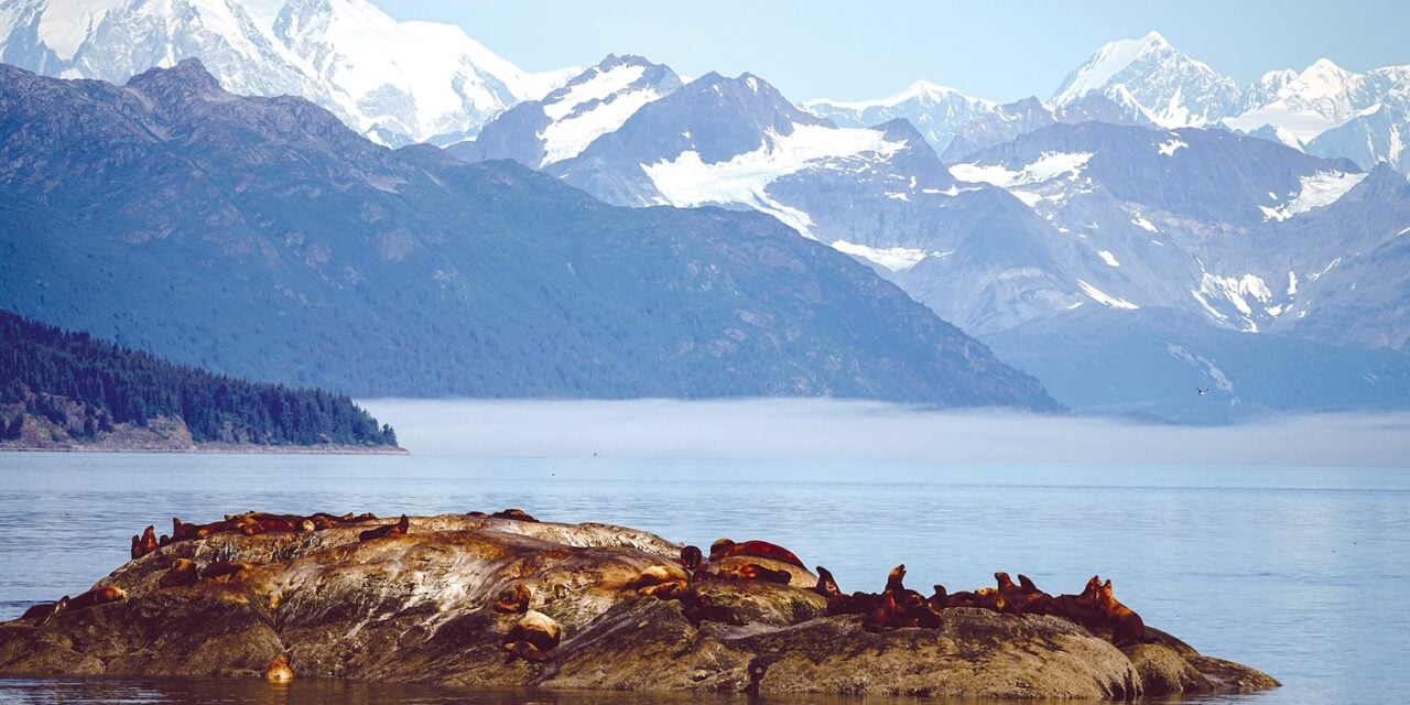 Uncruising and Unwinding in Alaska