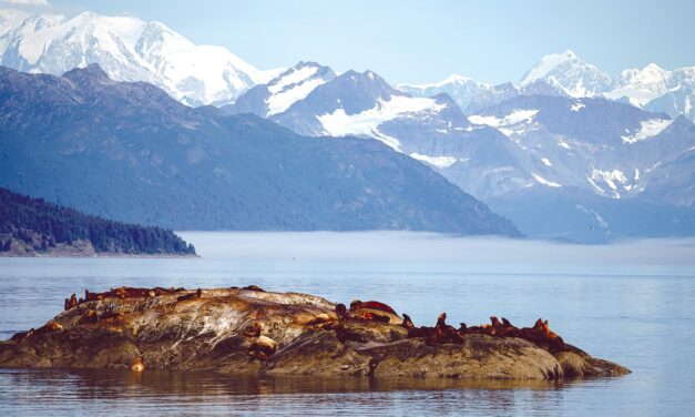 Uncruising and Unwinding in Alaska
