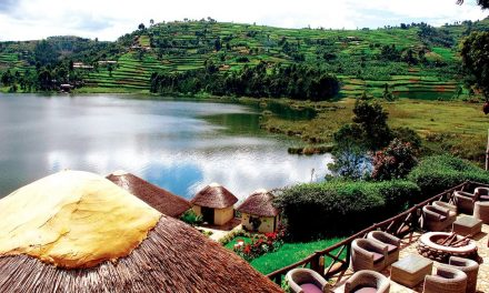 Uganda – The Perfect African Destination